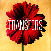 transfers_image_button_new